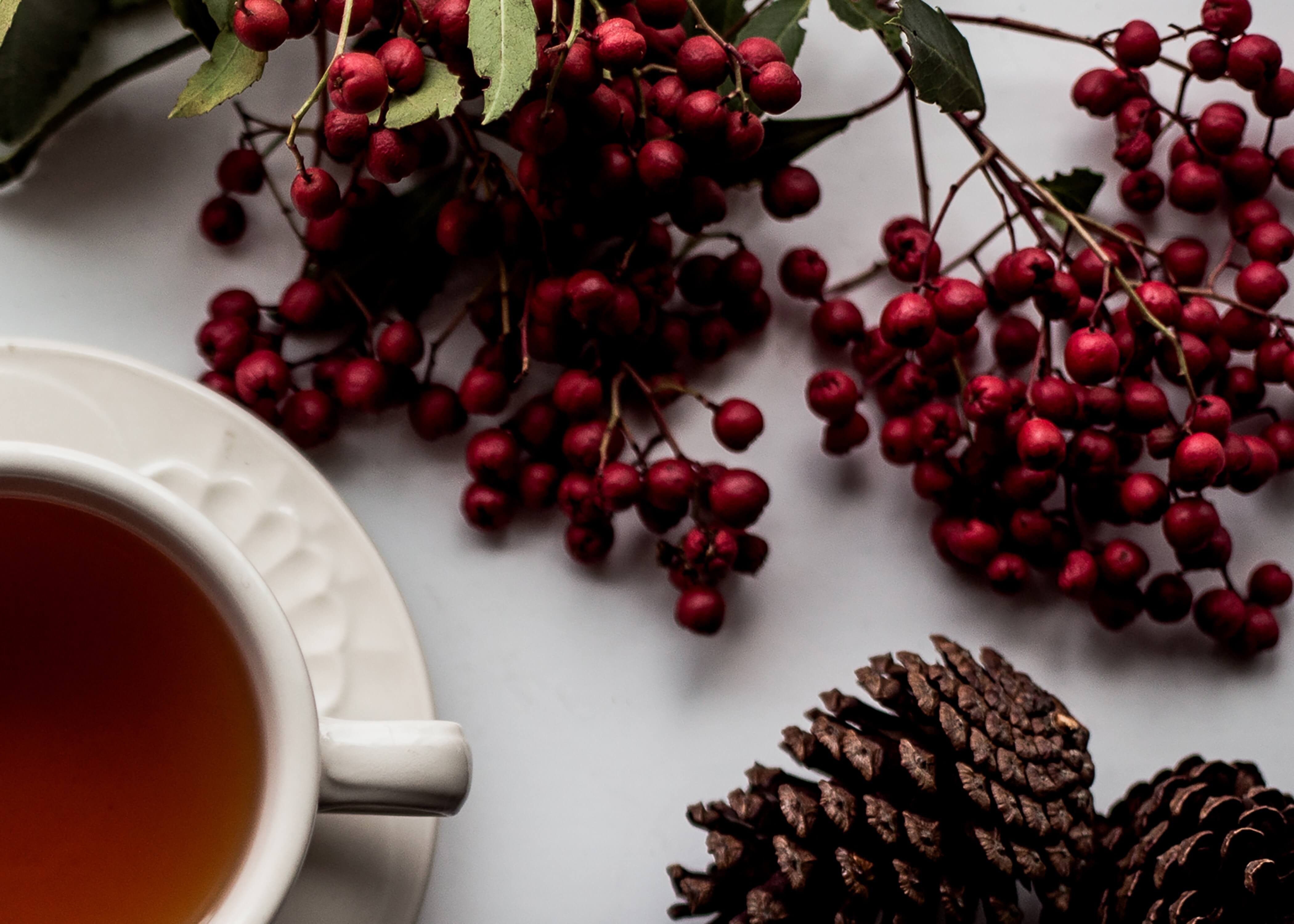 Flat lay of a mug of tea, cranberries, and pinecones for the holidays